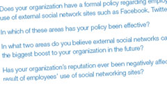 Employer Perspectives on Social Networking