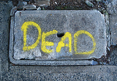 Windows Phone er død